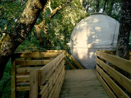 LE NATURA LODGE - Cocoon Tree